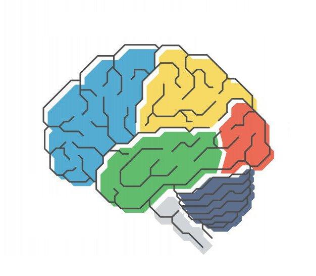 Anatomia della Mente - Limitless Mind